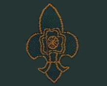 Scouts/ Guides image